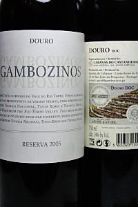 Cata de Vinos portugueses